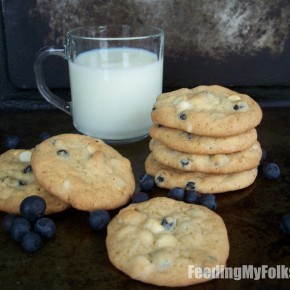 Blueberry & White Chocolate Cookies